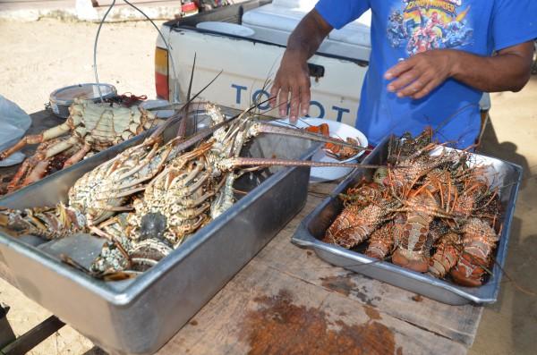 Hummer auf dem Fischmarkt Las Terrenas
