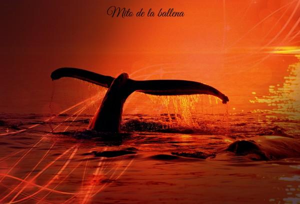mita de la ballena