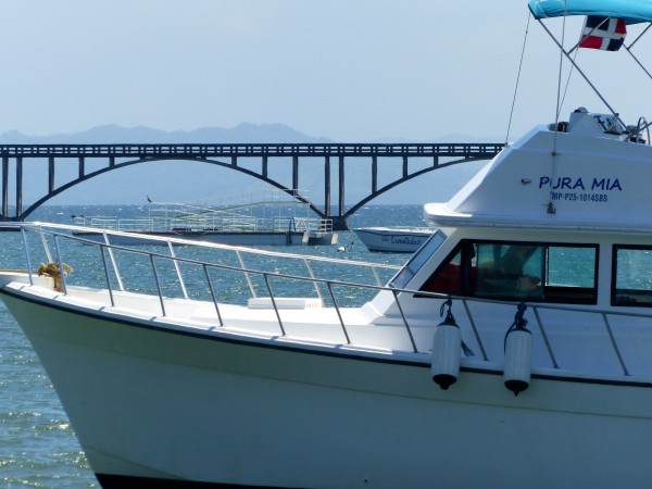 Pura Mia- das Boot von Whale Samaná